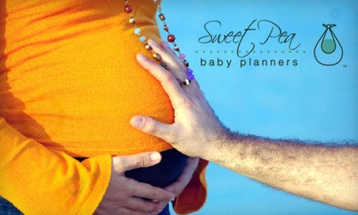 Sweet Pea Baby Planners - Charlotte: $49 for Two Hour-Long Baby-Planning Sessions from Sweet Pea Baby Planners ($160 Value)