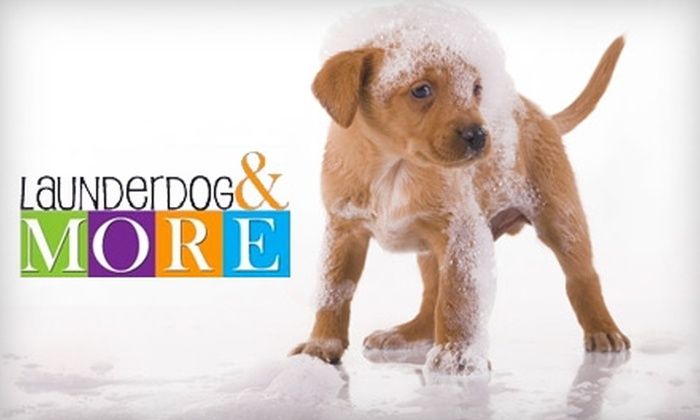 Launder Dog - Arden - Arcade: $8 for $17 Worth of Self-Serve Dog Grooming and Products at Launder Dog