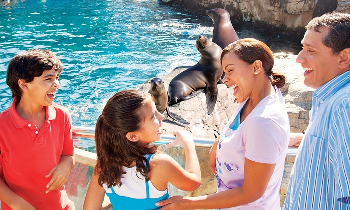 SeaWorld San Antonio - SeaWorld San Antonio: $35 for a Spring Vacation Ticket for One to SeaWorld San Antonio, April 7-May 25 ($70.36 Value)