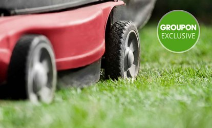 Hamilton: One-Hour Lawn Mowing: One ($35), Two ($69) or Three Services ($99) from Snowhite Cleaning (Up to $135 Value)