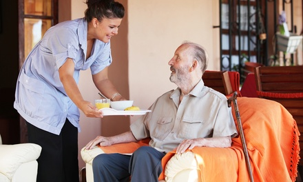One or Three Two- or Five-Hour Disabled-Persons- or Senior-Care Visits from A Helping Hand (Up to 49% Off)