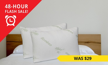 $24 for Two Large Bamboo Memory Foam Pillows