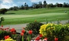 Bass Lake Golf Club - Cameron Park: $24 for Round of Golf for One with Cart Rental at Bass Lake Golf Course (Up to $48 Value)