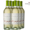 Wine Sisterhood Pinot Grigio Set (6 Bottles)