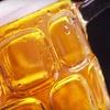Up to 51% Off Garden State BrewFest in Berkeley Heights
