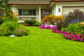 Emerald Cut Lawn and Landscape Inc.: $26 for One Application of Fertilizer from Emerald Cut Lawn and Landscape Inc. ($48 Value)