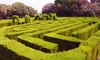 Hoo Hill Maze - Bedfordshire: Maze Entry for Two or a Family of Four at Hoo Hill Maze (Up to 42% Off)