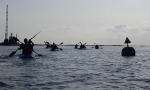 Fluid Adventures: Two-Hour Sunset Kayak Tour for Up to Four at Fluid Adventures (Up to 55% Off)