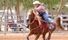 $72 for $130 Worth of Services — MW Performance Horses