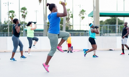 One or Two Months of Unlimited Boot Camp at Pro-Style Dynamic Bootcamp (91% Off)