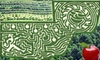 Jaemor Farms (Corn Maze) - Alto: $12 for Two All-Access Passes to Corn Maze and Autumnal Activities at Jaemor Farms in Alto ($24 Value)