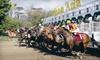 Santa Anita Chili Cookoff - Arcadia: Horseracing Package for Two or Four at Santa Anita Park in Arcadia