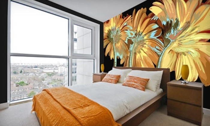 Murals Your Way: $49 for $150 Toward Murals from Murals Your Way
