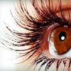 Up to 74% Off Eyelash Extensions in Scottsdale