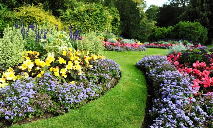 Lawn and Garden Care - Dustin's Lawn Care Services   Groupon