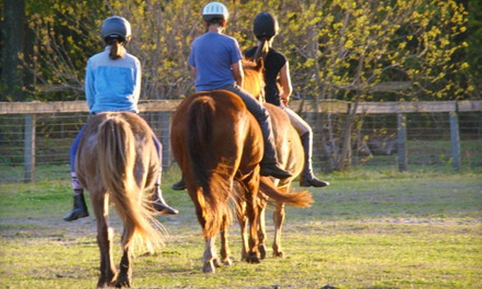 Stono River Riding Academy - Johns Island: $50 for a One-Hour Guided Horseback Trail Ride for Two at Stono River Riding Academy on Johns Island ($110 Value)