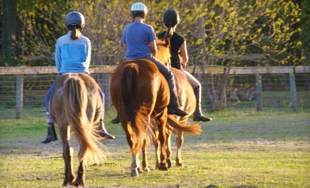 Stono River Riding Academy - Stono River Riding Academy in Johns Island