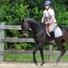 Half Off Horseback-Riding Lessons in Portsmouth