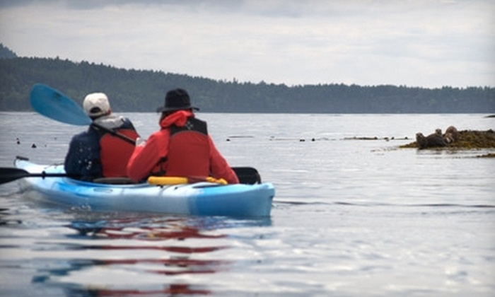 Outer Island Expeditions - Orcas: Kayaking Tour from Outer Island Expeditions. Two Options Available.