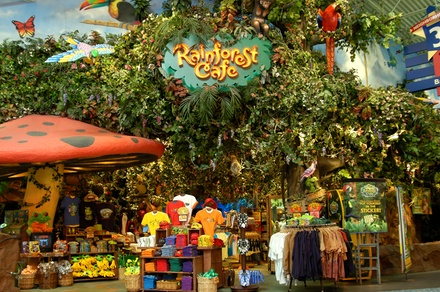 Rainforest Cafe In Edison Nj Groupon