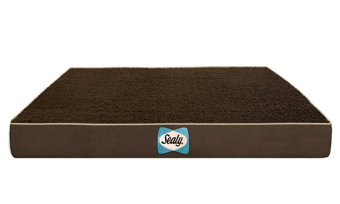 Sealy Large Sherpa Dog Bed Groupon