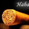 $10 for Cigars at Habana Hut in Bayside