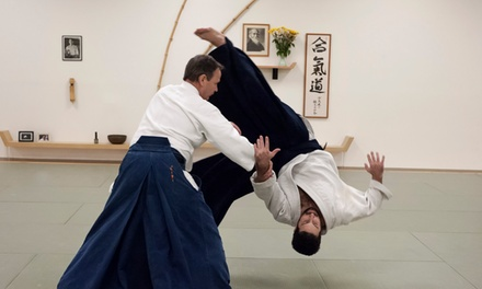 $60 for $200 Worth of MartialArts Lessons  Aikido Florida Aikikai