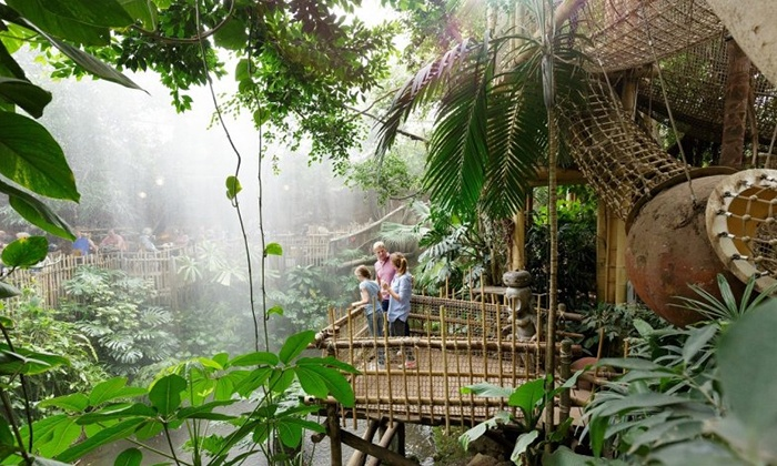 center parcs het heijderbos jungle dome cabana in groupon getaways. Black Bedroom Furniture Sets. Home Design Ideas