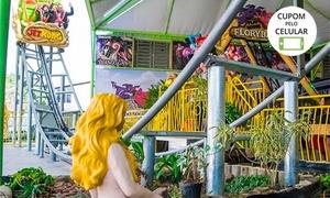 Parque Play House Florybal: Ingresso com 10 ou 16 créditos para o Parque Play House Florybal - Canela