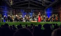 """2 Open-Air-Tickets für die """"Sommernacht der Filmmusik"""" am 14.08. im Brunnenhof der Residenz München (bis zu 34% sparen)"""