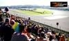 Entrada días 15, 16 y 17 Nov al Gran Premio de la Comunitat Valenciana