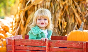 A Place for Dreamers: Admission for Two or Four to Sugar Land Zydeco Pumpkin Festival at A Place for Dreamers (39% Off)