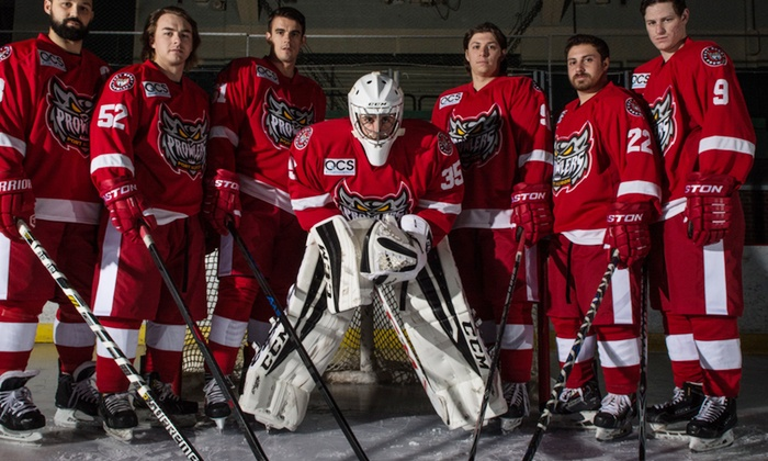 Port Huron Prowlers - McMorran Place: Port Huron Prowlers Hockey Game for One or Two (December 31–April 3)