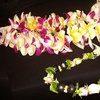 Half Off Leis and Flowers from Lei of Love