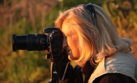 BetterPhoto.com - BetterPhoto.com in
