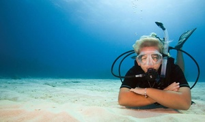 """Szkoła Nurkowania LoveToDive.pl: Kurs """"Odkryj nurkowanie w wodach otwartych"""": nurkowanie i teoria od 169,99 zł w Szkole Nurkowania LoveToDive.pl"""