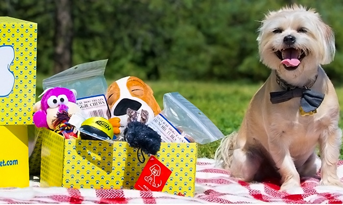 Surprise My Pet: $12.99 for First Month Subscription for Monthly Delivery of Dog Goodies from Surprise My Pet ($25 Value)