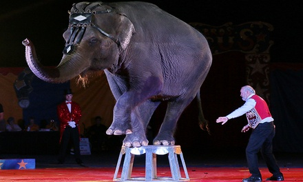 Loomis Bros. Circus for One Adult, Child, or Family of Six through July 14 (Up to 69% Off)