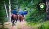 Up to 54% Off Trail Rides at Breckenridge Stables