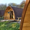 Forest of Dean: Up to 4-Night Glamping