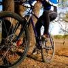Up to 52% Off Bike Tune-Ups at Cycle Dynamics