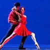 """""""Day of the Gypsy"""" –Up to 50% Off Ballet"""