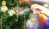24K Gold–Plated Matashi Crystal Christmas Ornaments (3-Pack) : 24K Gold–Plated Matashi Crystal Christmas Ornaments (3-Pack)