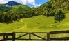 Trentino: soggiorno in appartamento fino a 4 persone
