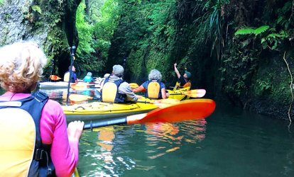 3-Hr Winter Glow Worm Kayaking Experience