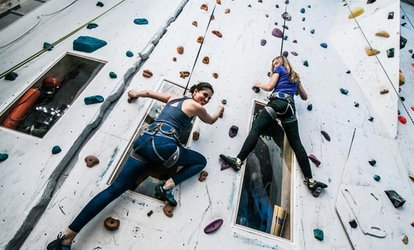 Ninja Warrior and Climbing Combo with Automatic Belay for One, Two or Four with Roc Gyms (Up to 51% Off)