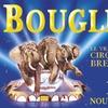 Le cirque Bouglione à Brest