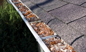 B.A. Commercial Maintenance: Roof-Maintenance Package with Gutter Cleaning from B.A. Commercial Maintenance (56% Off)