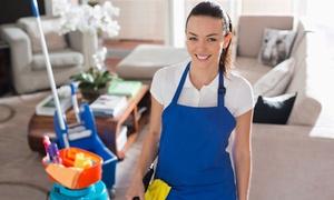 Rein Service: Wohnungsreinigung von 50 bis 200 qm inkl. An- und Abfahrt von Rein Service (bis zu 35% sparen*)
