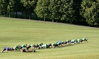 One Month of Unlimited Boot Camp Classes with Commando Fit